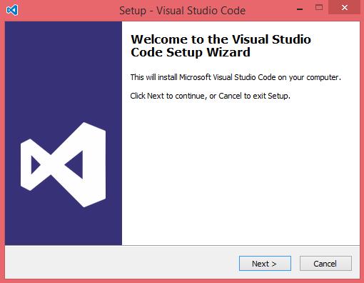 双击 VSCodeSetup.exe 图标