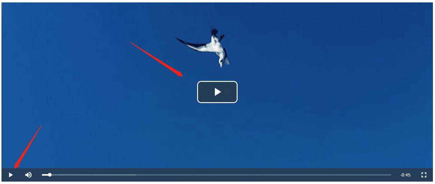Html5视频播放插件video.js使用技巧及细节优化