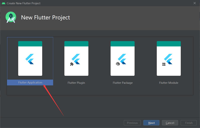 选项Flutter Application